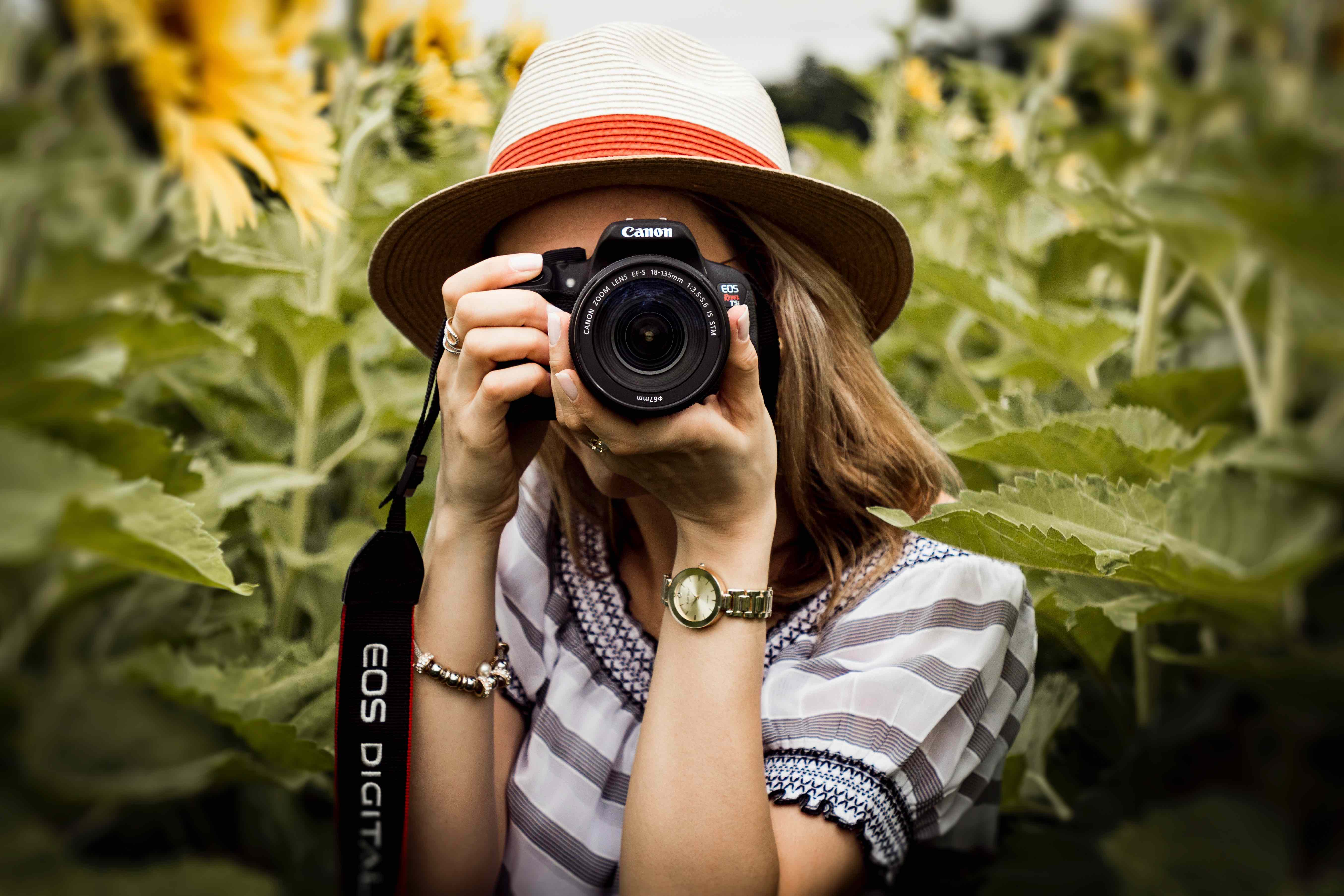 photographie champs